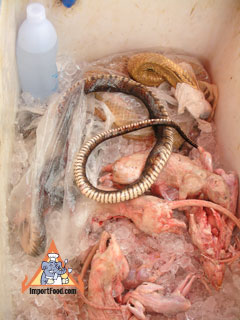 Thai highway vendor sells rice field rats frogs chickens and snakes