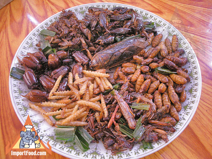 Thai Insects - Popular Snack Food in Thailand - Plate of cooked and seasoned insects