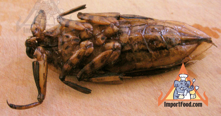 Thai Insects - Popular Snack Food in Thailand - Maeng Da