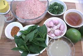 Thai Spicy Ground Chicken and Toasted Rice, 'Larb Gai' - Ingredients ready