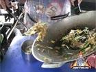 Sen Mee Pad Siew Moo