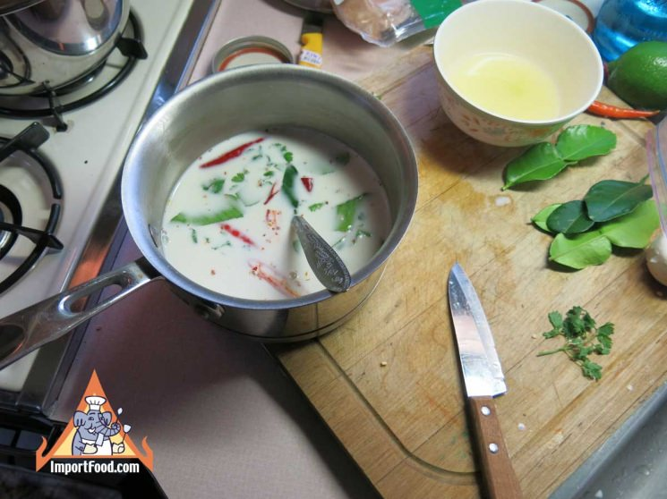 Thai Chicken Soup with Coconut Milk, 'Tom Kha Gai'
