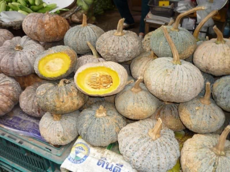 Pumpkin Soup, Thai-American Style