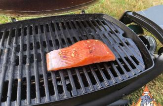 Barbecue Lightly Seasoned Salmon