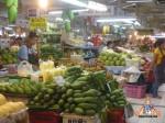 17_mangoes.jpg