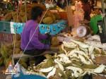 durian_thailand_1l.jpg