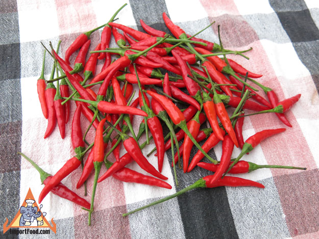 Fresh Red Thai Chile Peppers