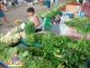 freshmarket_vendor_l.jpg