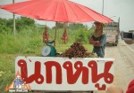 Thai Highway Vendor Sells Rice-Field Rats, Frogs, Chickens and Snakes