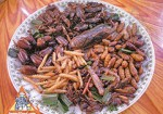 Thai Insects - Popular Snack Food in Thailand